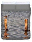 Gull At Sunset Duvet Cover