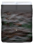 Harbor Seal In Kelp Bed Duvet Cover
