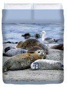 Harbor Seal Phoca Vitulina Mother Duvet Cover