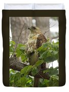 Hawk On Watch Duvet Cover