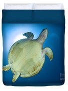 Hawksbill Sea Turtle Belly, Australia Duvet Cover