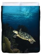 Hawksbill Sea Turtle Swimming Duvet Cover