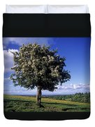 Hawthorn Tree On A Landscape, Ireland Duvet Cover