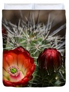 Hedgehog Cactus Flowers  Duvet Cover