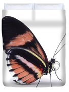 Heliconius Butterfly Heliconius Sp Duvet Cover