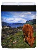 Highland Cattle, Scotland Duvet Cover