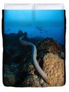 Highly Venomous Olive Sea Snake Duvet Cover