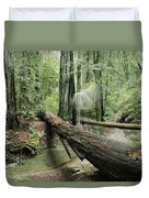 Hiker Moving Over A Fallen Redwood Tree Duvet Cover