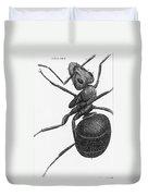 Hooke: Ant, 1665 Duvet Cover
