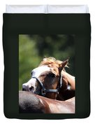 Horse At Mule Days 2012 - Benson Duvet Cover