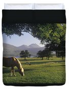 Horse Grazing On A Landscape Duvet Cover