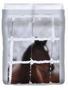 Horse Viewed Through Frost Covered Wire Fence Duvet Cover