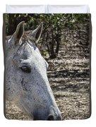 Horse With No Name V3 Duvet Cover