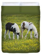 Horses Grazing, County Tyrone, Ireland Duvet Cover