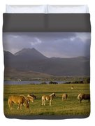 Horses Grazing, Macgillycuddys Reeks Duvet Cover