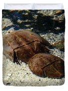 Horseshoe Crabs Duvet Cover