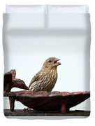 House Finch Eating Jelly Duvet Cover