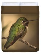 Humming Bird On Branch Duvet Cover