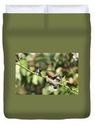Hummingbird - You Have Done It Now Duvet Cover