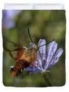 Hummingbird Or Clearwing Moth Din137 Duvet Cover