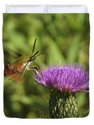 Hummingbird Or Clearwing Moth Din141 Duvet Cover