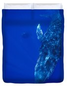 Humpback Whale Singer And Joiner Maui Duvet Cover