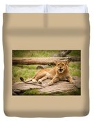 Hungry Lion Duvet Cover