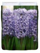 Hyacinth Hyacinthus Sp Skyline Variety Duvet Cover