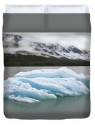 Iceberg In Endicott Arm, Inside Duvet Cover