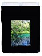Ichetucknee Blue Hole Spring Duvet Cover