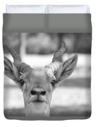 Impala -black And White Duvet Cover