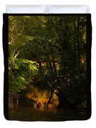 In Golden Moments Of Reflection Duvet Cover