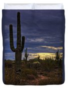 In The Shadow Of The Saguaro  Duvet Cover