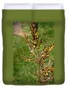 Indian Grass Seed Duvet Cover