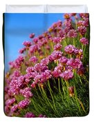 Ireland Close-up Of Seapink Wildflowers Duvet Cover