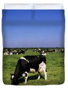 Ireland Friesian Cattle Duvet Cover