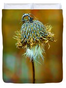 Isolated Locoweed Duvet Cover