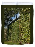 Ivy Covered Chapel Duvet Cover