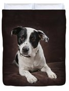 Jack Russell Terrier On A Brown Studio Duvet Cover