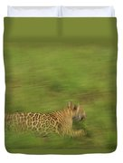 Jaguar Panthera Onca Running Duvet Cover