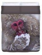 Japanese Snow Monkey Duvet Cover