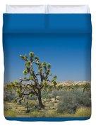 Joshua Trees Number 339 Duvet Cover