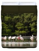 Juvenile And Adult Roseate Spoonbills Duvet Cover