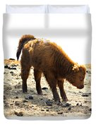 Juvenile Scottish Highlander Cattle Duvet Cover