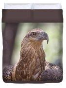 Juvenile Sea Eagle Duvet Cover