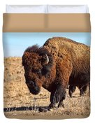 Kansas Buffalo Duvet Cover
