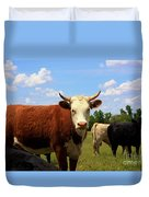 Kansas Country Cow's With Blue Sky And Grass Duvet Cover