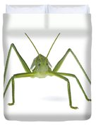 Katydid Silaka Nature Reserve South Duvet Cover