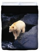 Kermode Bear On Boulder Hunting Salmon Duvet Cover