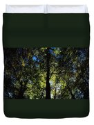 Killarney, Co Kerry, Ireland, Sunlight Duvet Cover